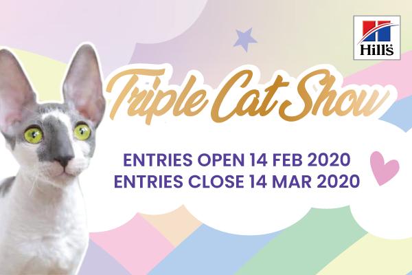 KZNCC Triple Cat Show Entries Now Open