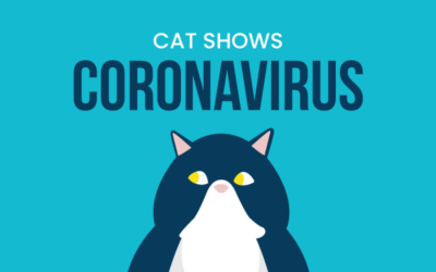 Cat Shows and Novel Coronavirus