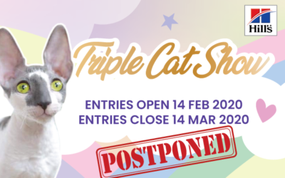 Triple Cat Show Postponed
